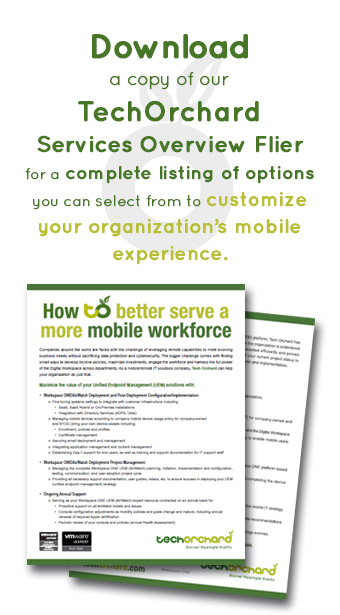 Tech Orchard Services Overview Flier